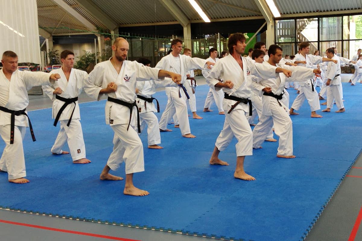 Karate in Gorinchem vanaf 12 jaar