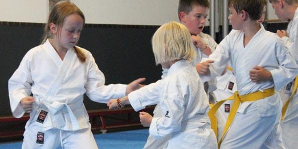 Karate voor kinderen in Gorinchem die oefenen op eigen niveau